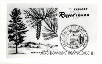 Misc, ID,s;   Misc, Idaho Postcard