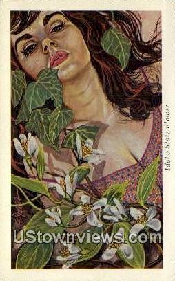 State Flower - Misc, Idaho ID Postcard