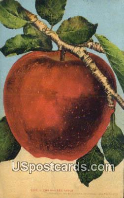 Big Red Apple - Misc, Idaho ID Postcard