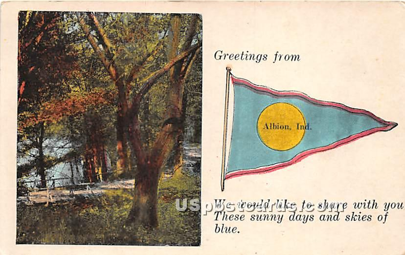 Albion, Illinois IL Postcard