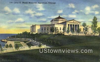 John G. Shedd Memorial Aquarium - Chicago, Illinois IL Postcard
