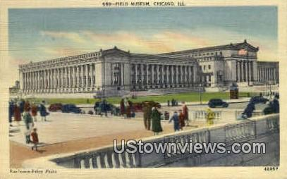Field Museum  - Chicago, Illinois IL Postcard