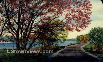 Highway Scene - Chicago, Illinois IL Postcard