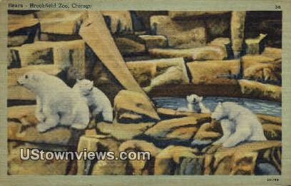 Brookfield Zoo - Chicago, Illinois IL Postcard