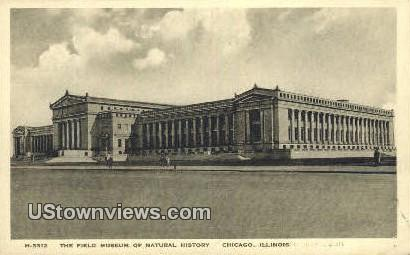 Field Museum of Natural History - Chicago, Illinois IL Postcard