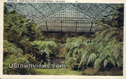 Garfield Park Conservatory - Chicago, Illinois IL Postcard