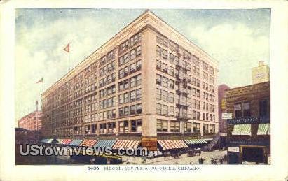 Siegel, Cooper & Co Store - Chicago, Illinois IL Postcard