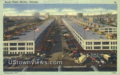 South Water Market - Chicago, Illinois IL Postcard