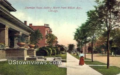 Sheridan Road - Chicago, Illinois IL Postcard