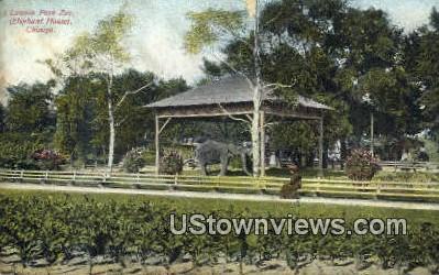 Lincoln Park Zoo - Chicago, Illinois IL Postcard