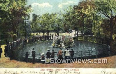 Seal Grotto, Lincoln Park - Chicago, Illinois IL Postcard
