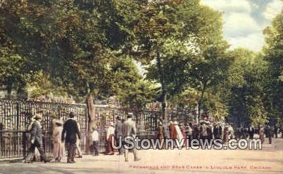 Bear Cages, Lincoln Park - Chicago, Illinois IL Postcard