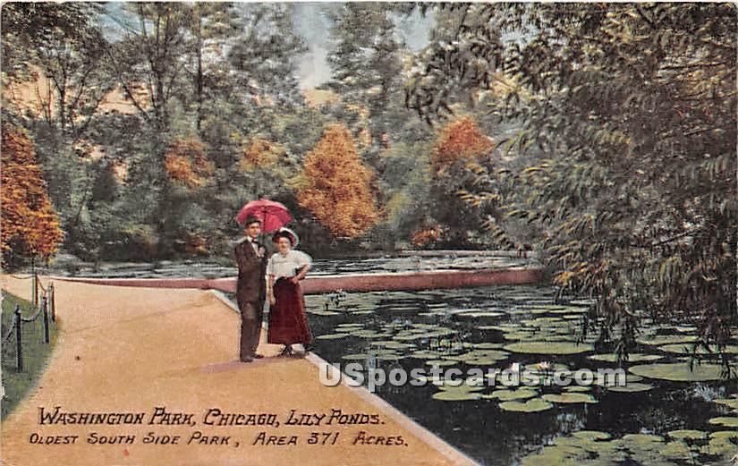 Washington Park, Lily Pond - Chicago, Illinois IL Postcard