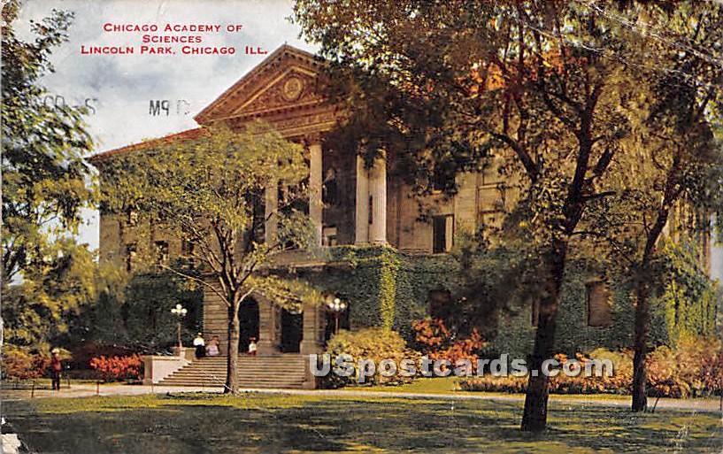 Chicago Academy of Sciences - Illinois IL Postcard