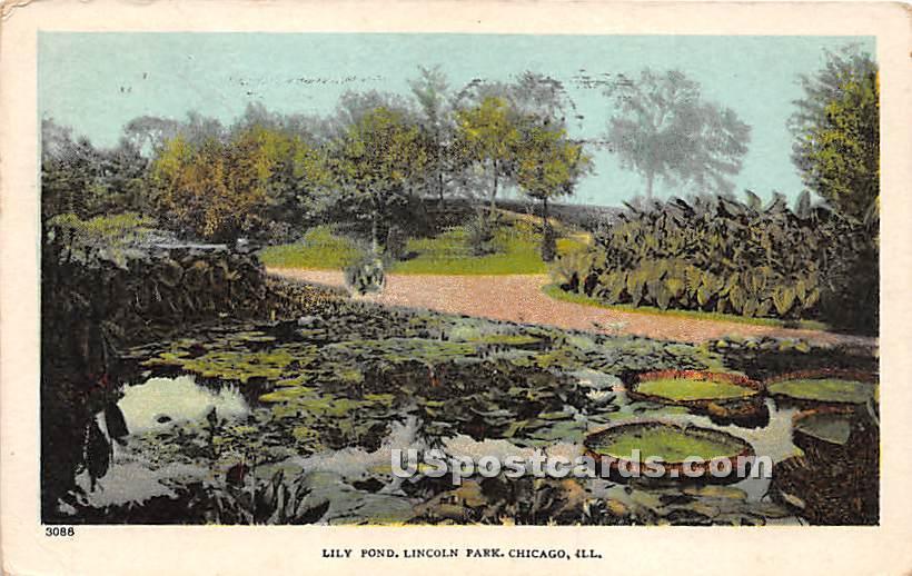 Lily Pond, Lincoln Park - Chicago, Illinois IL Postcard