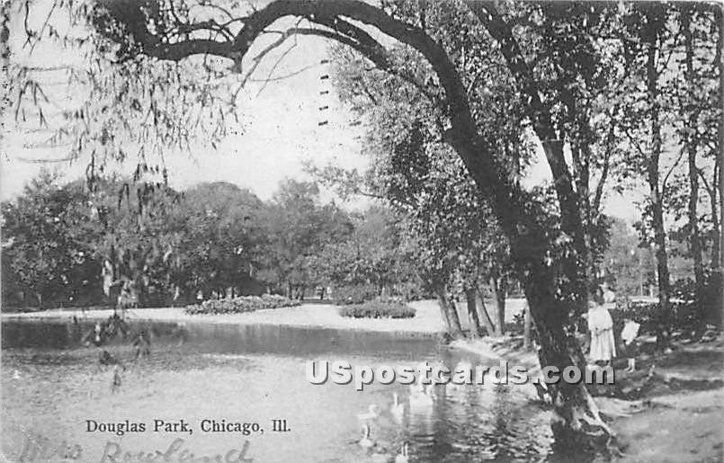 Douglas Park - Chicago, Illinois IL Postcard