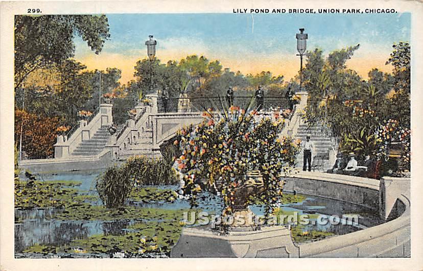 Lily Pond & Bridge, Union Park - Chicago, Illinois IL Postcard
