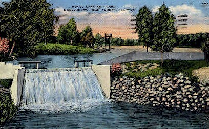 Moose Lake & Dam - Aurora, Illinois IL Postcard