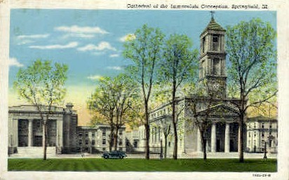 Cathedral of Immaculate Conception - Springfield, Illinois IL Postcard