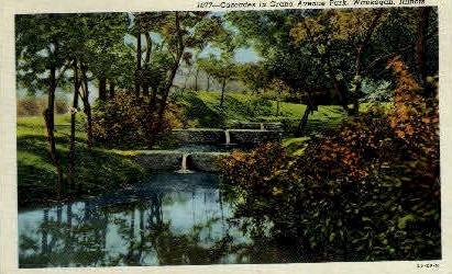 Cascades in Grand Ave. Park - Waukegan, Illinois IL Postcard