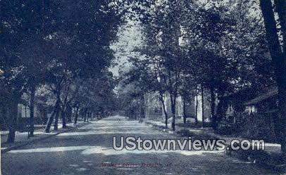 Walnut Street - Danville, Illinois IL Postcard