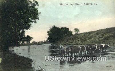 Fox River - Aurora, Illinois IL Postcard