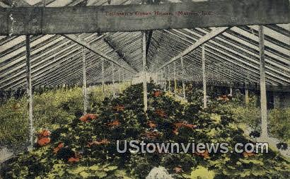 Teilman's Green House - Marion, Indiana IN Postcard