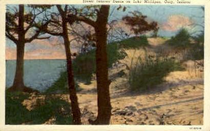 Dunes on Lake Michigan - Gary, Indiana IN Postcard