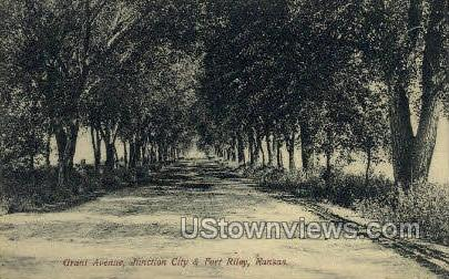 Grant Ave - Fort Riley, Kansas KS Postcard