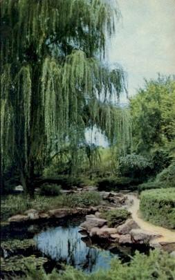 Sunset Park - Salina, Kansas KS Postcard