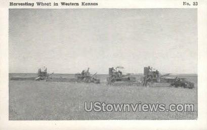 Harvesting Wheat - Wichita, Kansas KS Postcard