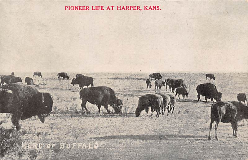 Harper KS