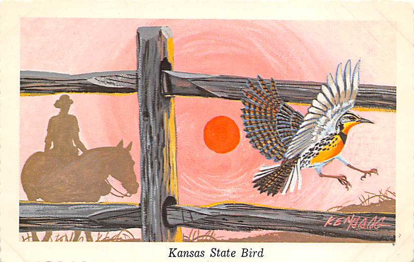 Kansas State Bird KS
