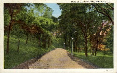 Drive in Atkinson Park - Henderson, Kentucky KY Postcard