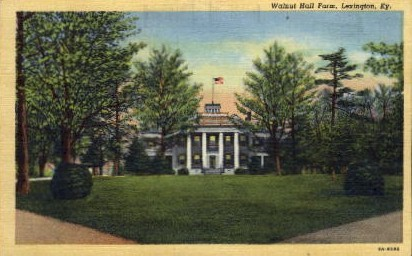 Walnut Hall Farm - Lexington, Kentucky KY Postcard