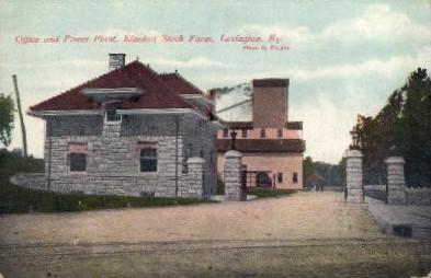 Elmdorf Stock Farm - Lexington, Kentucky KY Postcard