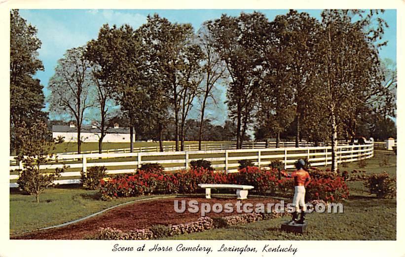 Horse Cemetery - Lexington, Kentucky KY Postcard