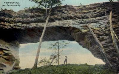 Natural Bridge - Lexington, Kentucky KY Postcard