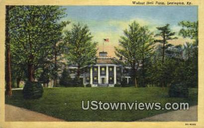 Walnut Farm - Lexington, Kentucky KY Postcard