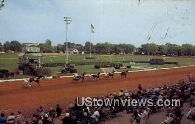 Trotting Races - Lexington, Kentucky KY Postcard