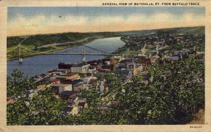 View of Maysville - Kentucky KY Postcard