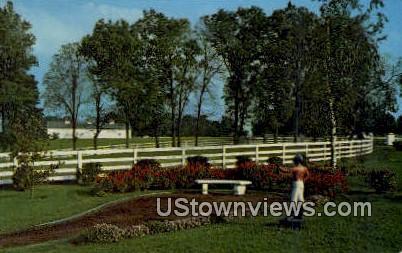 Blue Grass Country - Lexington, Kentucky KY Postcard