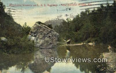 L & E Railway - Natural Bridge, Kentucky KY Postcard