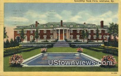 Spindletop Stock Farm - Lexington, Kentucky KY Postcard