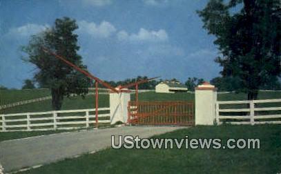 Calumnet Farm - Lexington, Kentucky KY Postcard