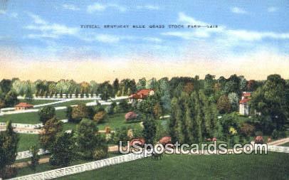 Kentucky Blue Grass Stock Farm - Misc Postcard