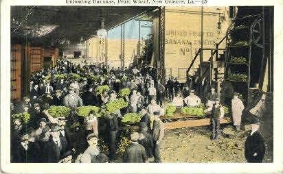 Fruit Wharf  - New Orleans, Louisiana LA Postcard