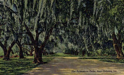 The Pakenham's Oaks - New Orleans, Louisiana LA Postcard
