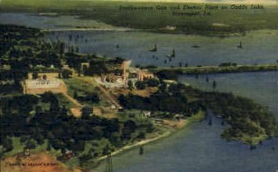 Caddo Lake  - Shreveport, Louisiana LA Postcard