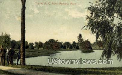 The M.A.C. Pond - Amherst, Massachusetts MA Postcard